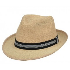 3D Fedora Palm Hat